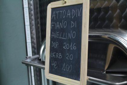 Atto a divenire Fiano di Avellino 2016